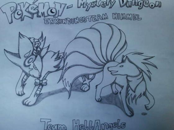 Pokémon Mystery Dungeon Himmel Team