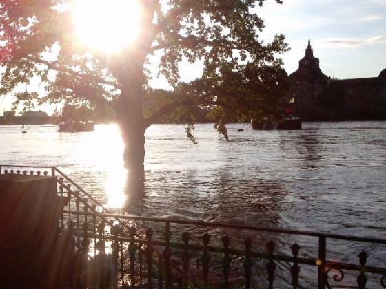 Elbhochwasser Dresden Sommer 2013