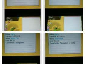 Mein 44., 45., 46. & 47. wildes Shiny in OmegaRubin *-* (26. + 27. September)