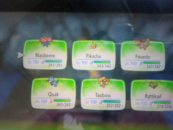 Mein Team (Let's Go Pikachu)