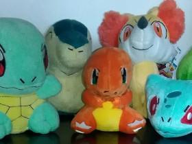 Meine Pokemon-Starter