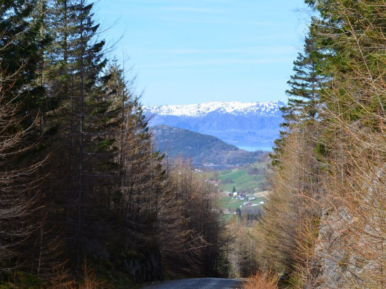 Path of a Mountain