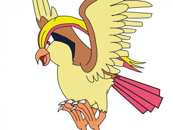 Daily Pokémon 18 - Tauboss