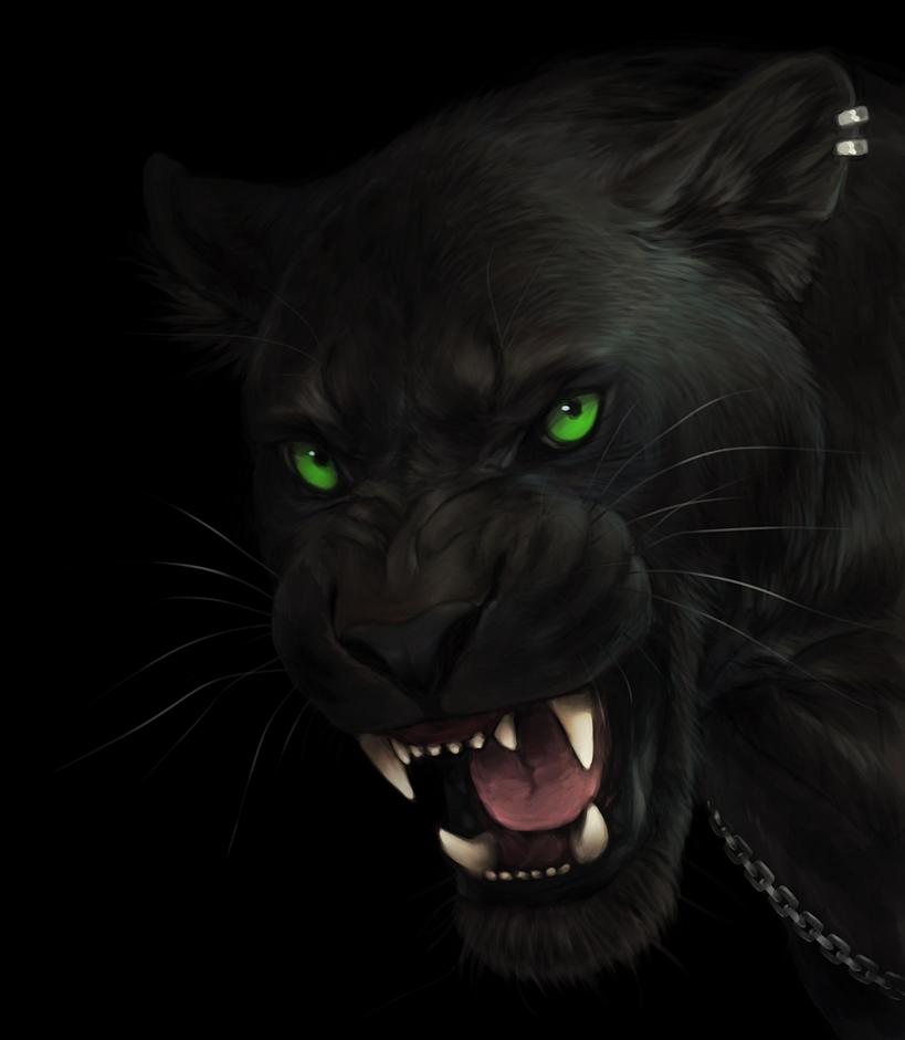 Rajani ~ Darker than Black