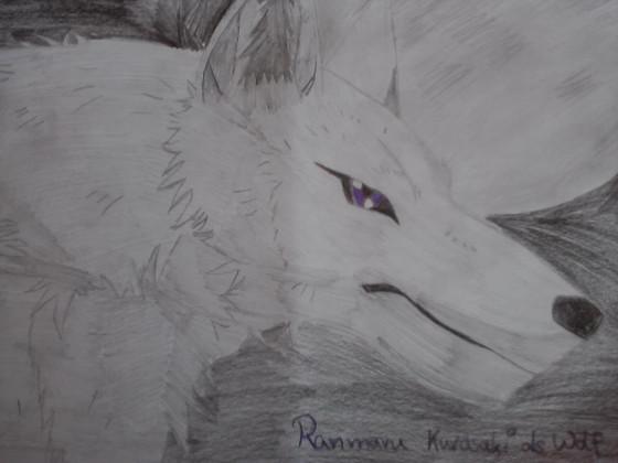 Ranmaru_Wolf