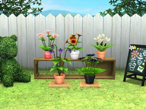 Basisgarten