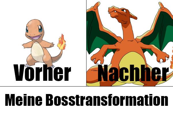 Bosstransformation