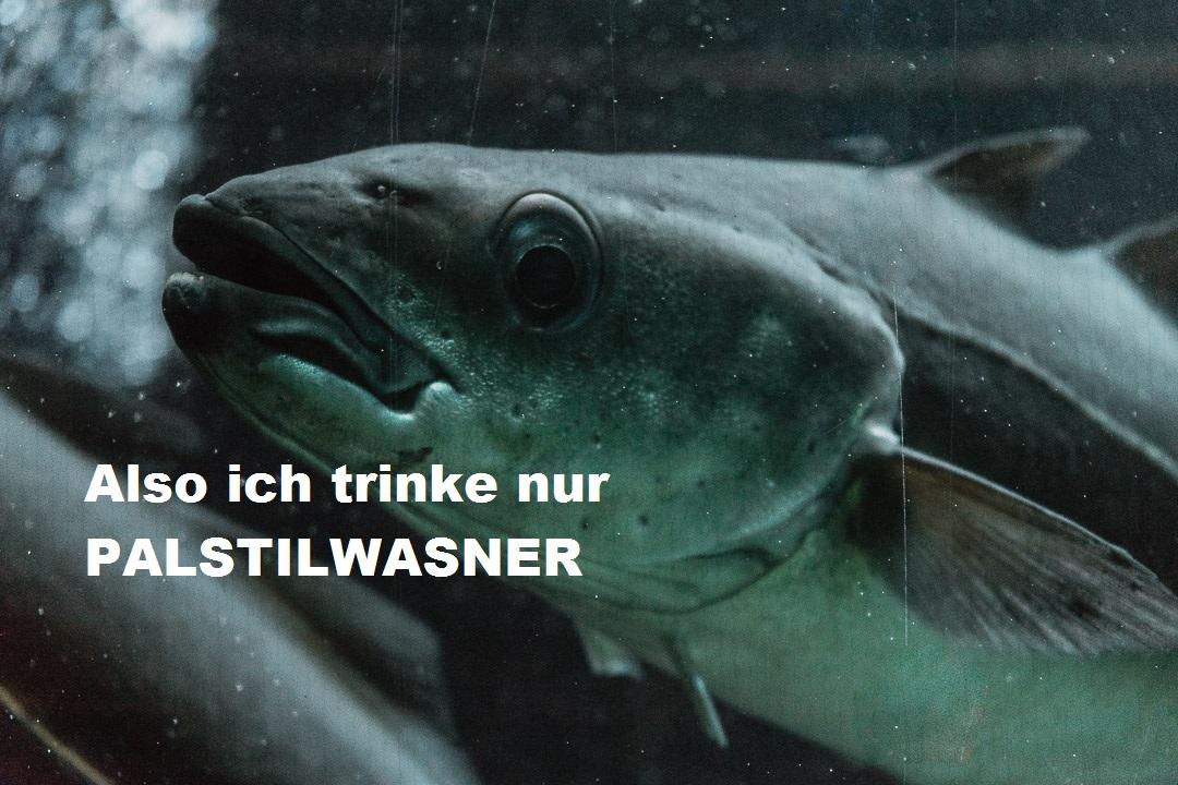 PALSTILWASNER