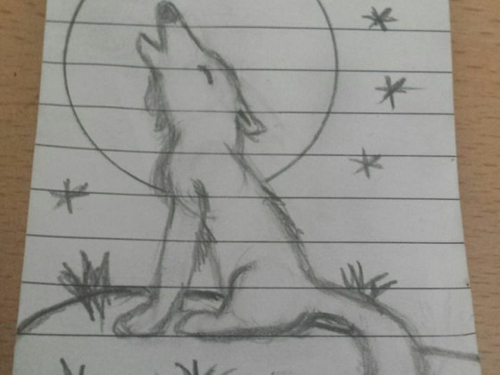 Wolf in der Nacht!