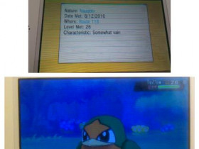 Mein 15. wildes Shiny in OmegaRubin *-* (12. August 2016)