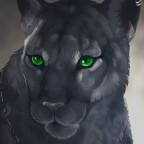 Rajani ~ Black Beauty