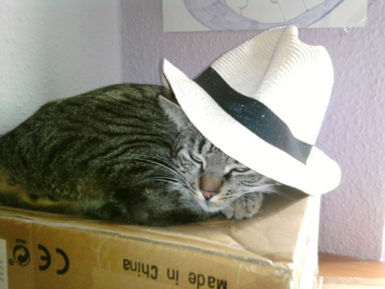 Benny mit Hut xD