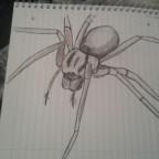 Von Hand gezeichnete E. atrica
