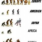der wahre weg der evolution.
