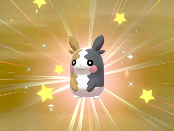 Shiny Morpeko!