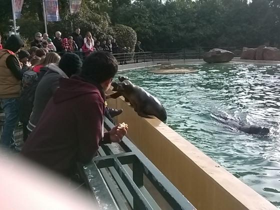 Ausflug - Heidelberger Zoo.