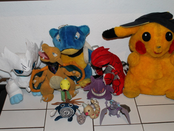 "Pokemon Plushies - ""10 Jahre Sammlung"""