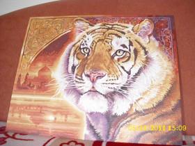 Bengal- Tiger