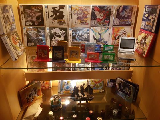 Pokemon Editionen Sammlung (Full View)