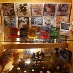Pokemon Editionen Sammlung (Full View)
