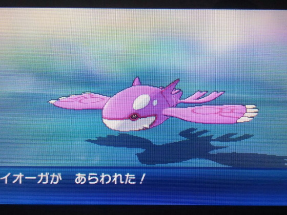 Pinker Orca